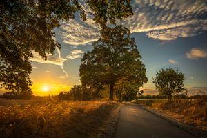 Бесплатные фото осень,закат,поле,дорога,деревья,небо,облака