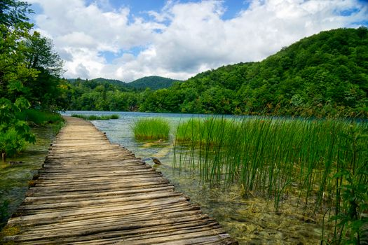 Photo free Croatia, Plitvice Lakes National Park, nature
