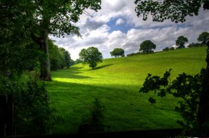Photo free hills, field, landscape