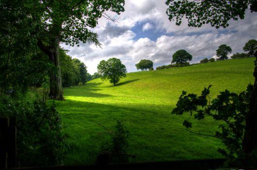 Фото бесплатно холмы, поле, пейзаж