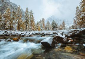 Первый снег на Алтае · бесплатное фото