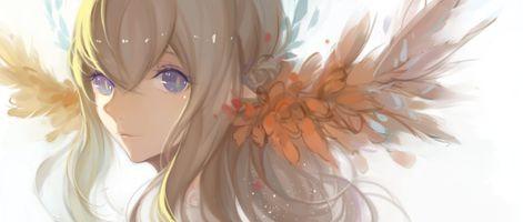 Photo free anime, girl, ears