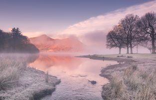 Заморозки поздней осенью · бесплатное фото