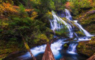 Ручей и водопад · бесплатное фото