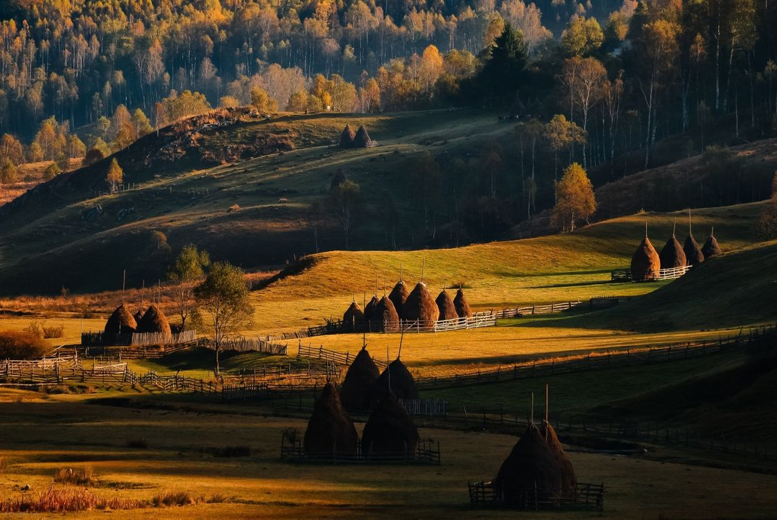 Фото бесплатно Румыния, сельское хозяйство, сельская местность - на рабочий стол