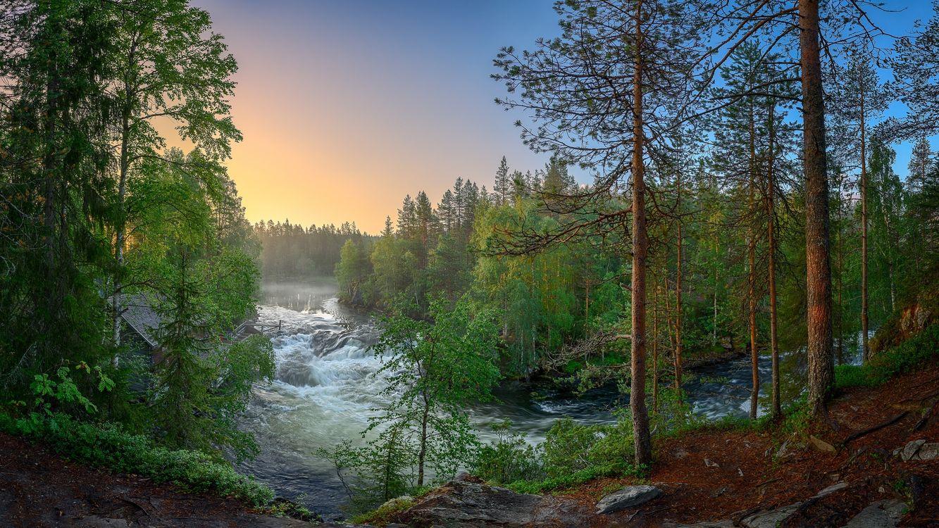 Фото бесплатно Река Киткайоки, Куусамо, Juuma, Suomi, деревья, лес, река, поток, Финляндия, пейзаж, пейзажи
