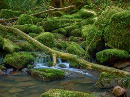 Фото бесплатно мох, водопад, пейзаж