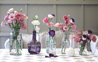 Photo free bottles, vases, bouquets