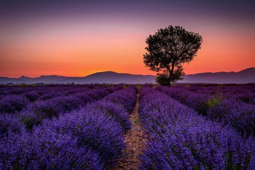 Photo free sunrise, landscape, sunset