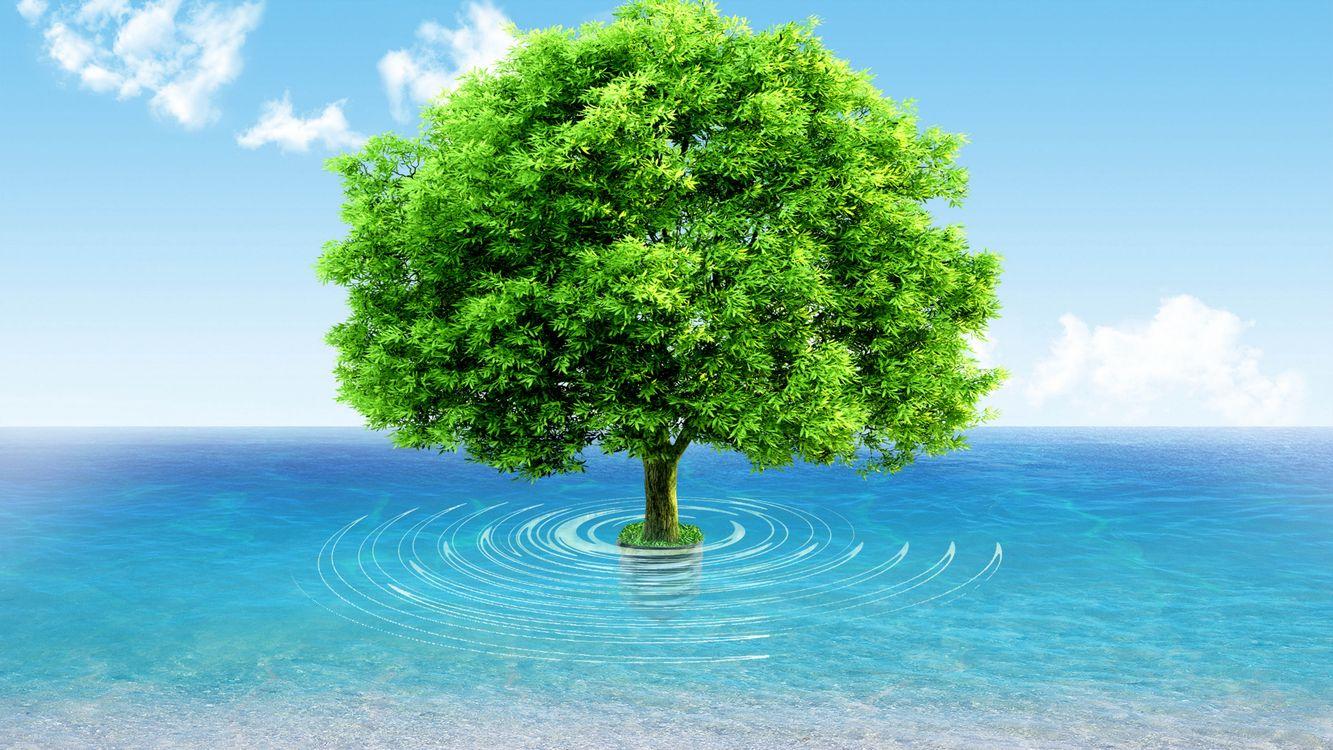 Обои дерево, вектор, вода, облака, небо, рисунок, фентези на телефон   картинки 3d графика - скачать
