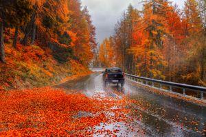 Заставки осень, дождь, мокрый асфальт