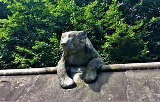 Бесплатные фото медведь,статуя,Cardiff Castle,Bute Park,Whales,Great Britain