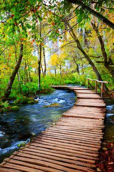 Фото бесплатно пейзаж, Хорватия, дорожки