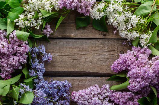 Photo free lilac, flowers, frame