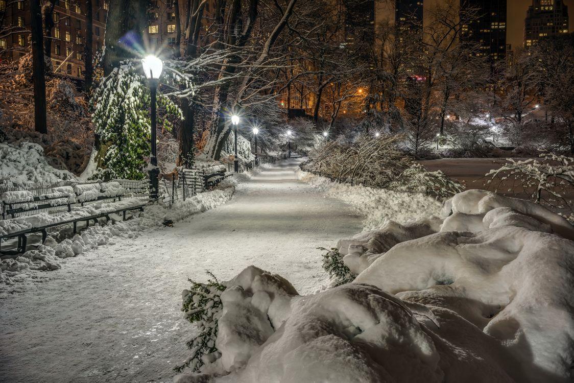 Фото бесплатно зимний парк, дорога, заборы - на рабочий стол
