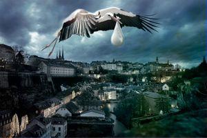 Бесплатные фото город,дома,небо,аист,сумерки,art,фотошоп