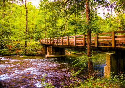 Фото бесплатно Great Smoky Mountains National Park, река, мост