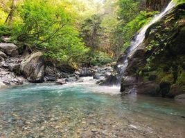 Фото бесплатно поток, лес, река