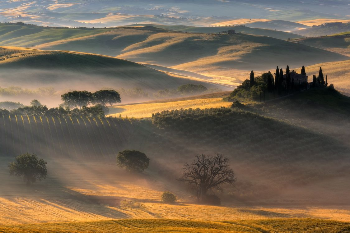 Фото бесплатно дюны, поле, деревья, восход, солнечный свет, пейзаж, природа, пейзажи