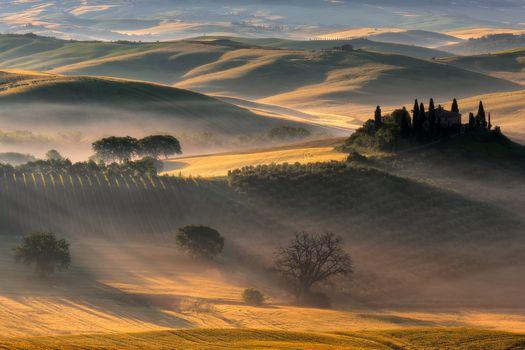Бесплатные фото дюны,поле,деревья,восход,солнечный свет,пейзаж,природа