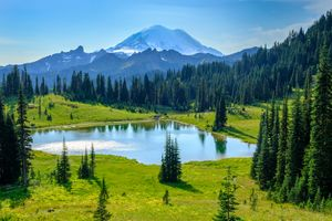 Бесплатные фото Tipsoo Lake,Mount Rainier National Park,Washington,USA,горы,озеро,деревья
