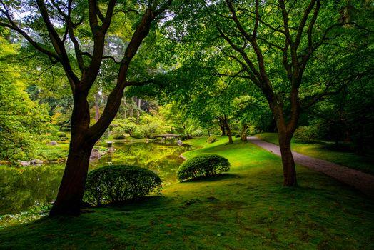 Фото бесплатно Nitobe Memorial Garden, Japanese garden, Vancouver