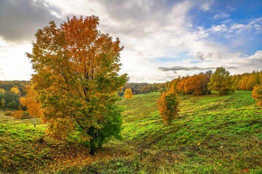 Фото бесплатно осенние краски, россия, парк