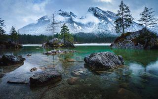 Заставки деревья, Озеро Хинтерзее, горы