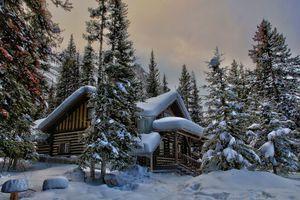 Заставки зима, снег, лес