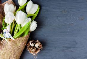 Бесплатные фото праздник, Пасха, декор