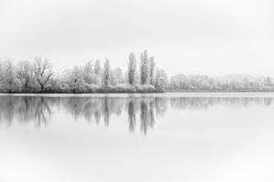 Фото бесплатно зима, озеро, сезон, минимализм, открытый, минимальный, лес, зеленый, птица, черно-белый, туманный, дерево