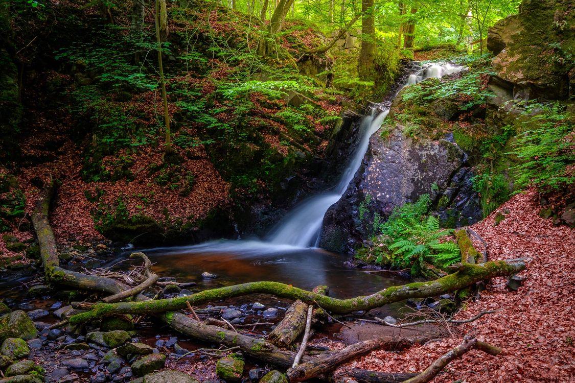 Фото бесплатно Sweden, Forsakar waterfall, водопад - на рабочий стол
