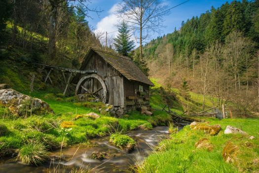 Photo free mill, black forest, bachelor