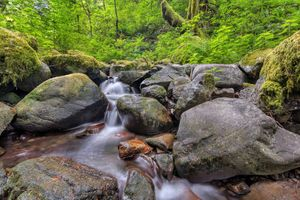 Photo free Ruckel Creek, Columbia River Gorge, waterfall