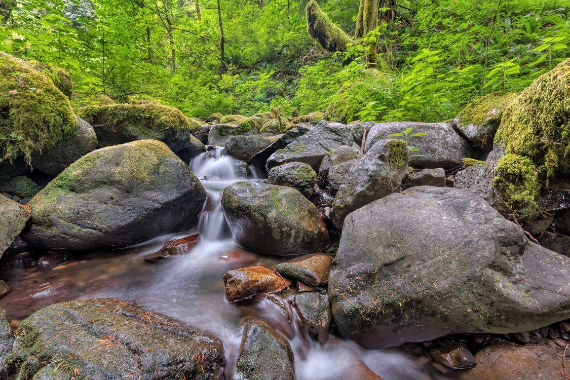 Фото Ruckel Creek Columbia River Gorge водопад - бесплатные картинки на Fonwall