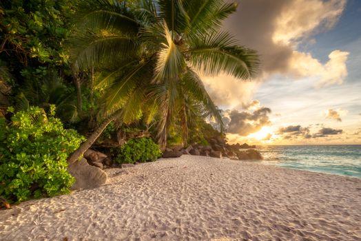 Бесплатные фото Сейшельские острова на острове Праслин на закате,море,пляж,пальмы,берег,песок,место отдыха,закат,природа,пейзаж