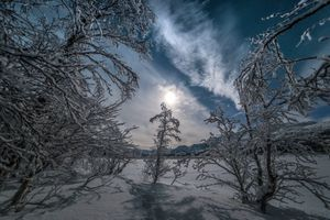 Бесплатные фото зима,ночь,горы,деревья,сугробы,снег,природа