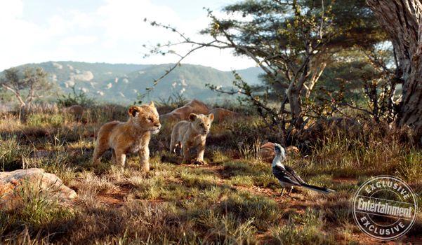 Заставки Симба,Нала,дети,прогулка,Король лев,2019