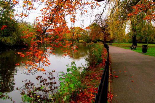 Фото бесплатно аллея, осень, лес