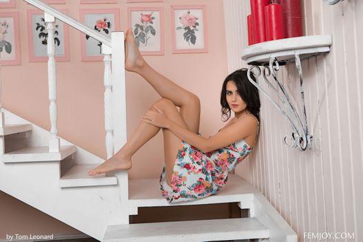 Бесплатные фото Mona,Ingrid,Matilda Y,Stella P,Viola,сексуальная девушка,beauty,сексуальная,молодая,богиня,киска,красотки