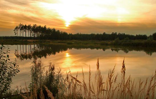 Заставки Отдых,озеро,вечер,закат,деревья,тростник