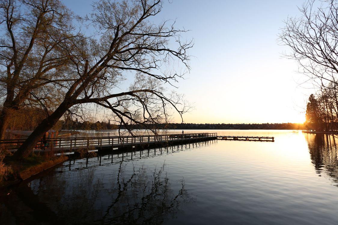 Обои пейзаж, утро, пирс, размышления, водный путь, воды, небо, дерево, река, банка, зима, озеро, растение, вечер, филиал на телефон | картинки пейзажи