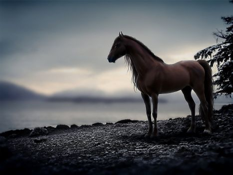Horse on the river Bank · free photo