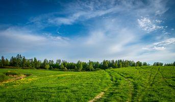 Фото бесплатно пейзаж, небо, поле