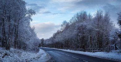 Бесплатные фото зима,дорога,трасса,снег,деревья,пейзаж