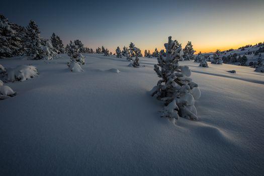 Красивые обои зима, закат, снег на рабочий стол