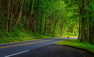Пригородная дорога