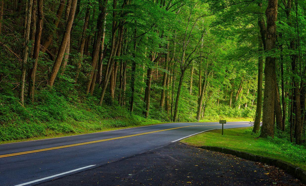 Пригородная дорога · бесплатное фото