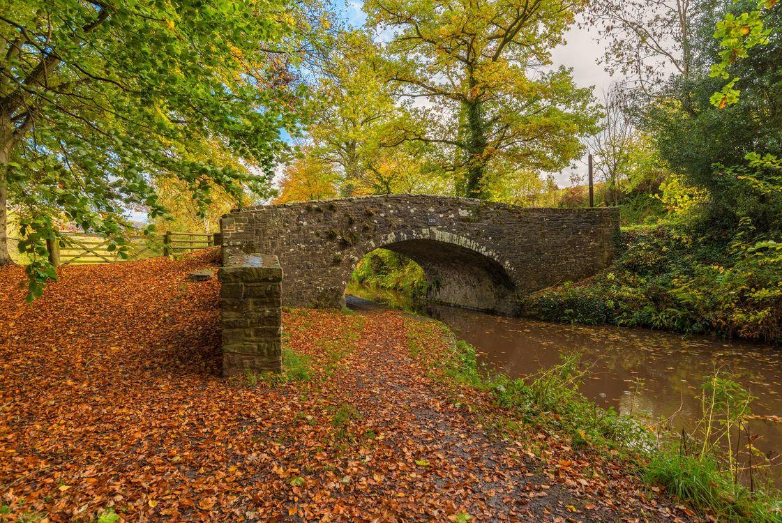 Фото бесплатно осень, канал, мост, деревья, осенние листья, осенние краски, природа, пейзаж, пейзажи