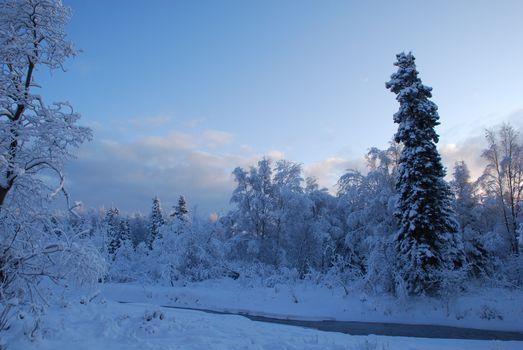 Photo free Alaska, winter, snow